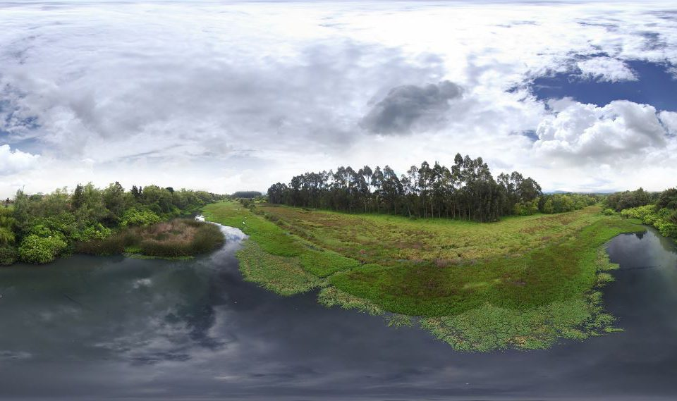 Humedal La Conejera. Foto: Secretaría de Ambiente.