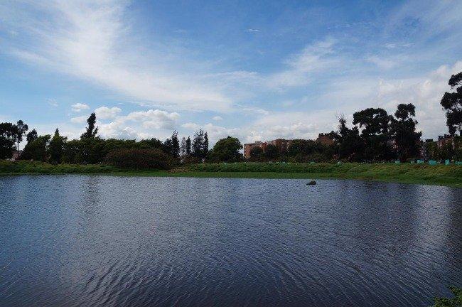 Humedal El Burro. Foto: Secretaría de Ambiente.