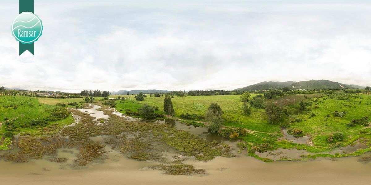 Humedal-Torca-y-Guaymaral