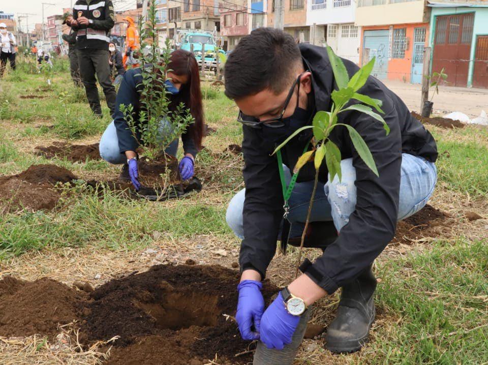 Secretaría de Ambiente, entidades, ambientalistas y comunidad plantaron 311 árboles en el humedal La Vaca, sector sur.