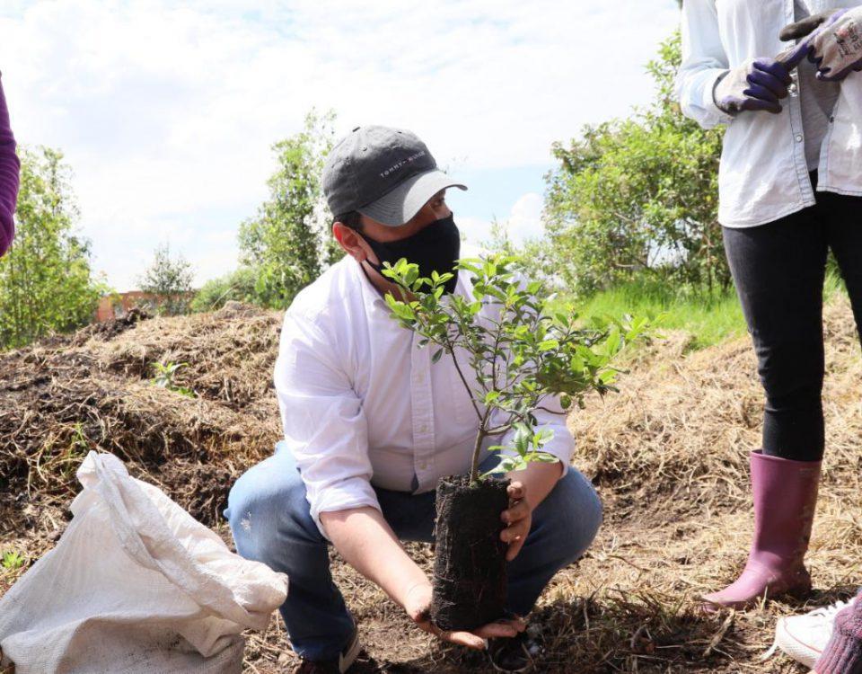 El subsecretario de Ambiente, Julio César Pulido en la plantación realizada en el humedal Capellanía. Foto: Comunicaciones, Secretaría de Ambiente.