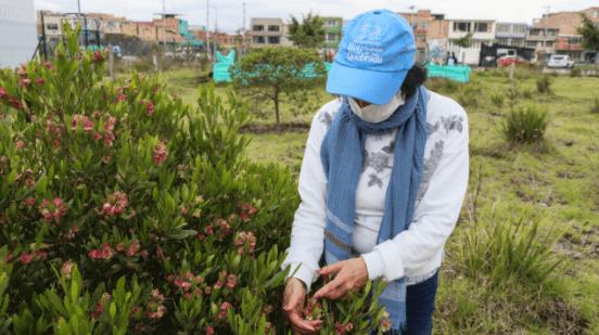 Tina Fresneda es una mujer que ha destinado varios años de su vida a proteger el humedal Tibanica. Ella fue una de las invitadas a los procesos de formación. Foto: Comunicaciones - Secretaría de Ambiente.